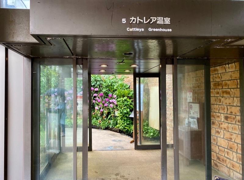 熱帯ドリームセンターカトレア温室01